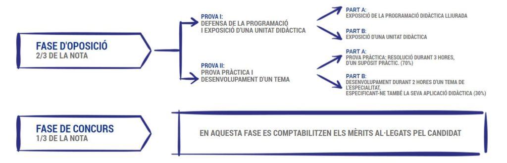 Com és l'oposició: fases de preparacio de l'oposició